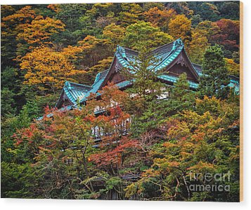 Autum In Japan Wood Print by John Swartz