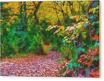 Autumn - 6 Wood Print by Okan YILMAZ