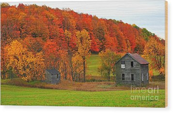 Wood Print featuring the photograph Autumn Abandoned by Terri Gostola