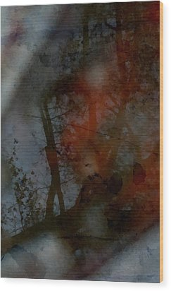 Wood Print featuring the photograph Autumn Abstract by Photographic Arts And Design Studio