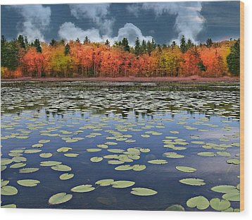 Autumn Across The Pond Wood Print