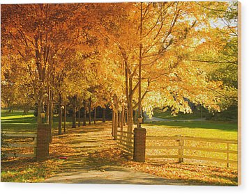 Autumn Alley Wood Print by Alexey Stiop