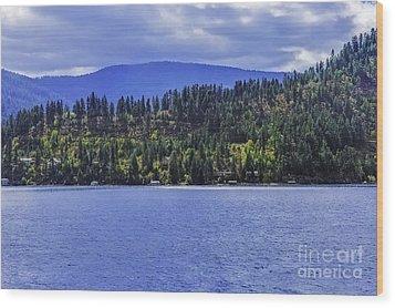 Autumn Among The Pines Wood Print
