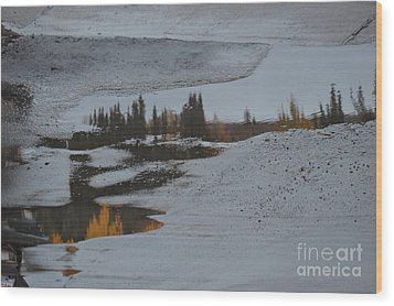 Autumn Arising Wood Print
