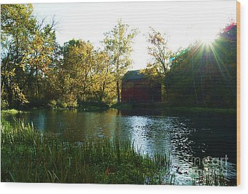 Wood Print featuring the photograph Autumn At Alley Spring And Mill by Julie Clements