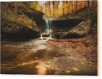 Autumn At Blue Hen Falls Wood Print