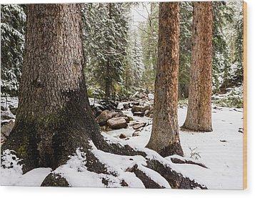 Autumn At Gore Creek 5 - Vail Colorado Wood Print by Brian Harig