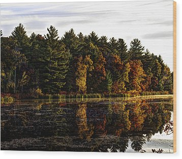 Autumn At It's Finest 2 Wood Print by Thomas Young