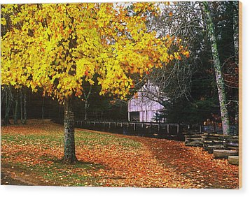 Wood Print featuring the photograph Autumn At Old Mill by Rodney Lee Williams