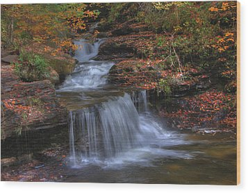 Autumn At Ricketts Glen Wood Print by Sharon Batdorf