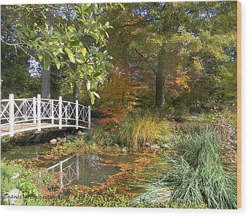 Autumn At Sayen Gardens Wood Print