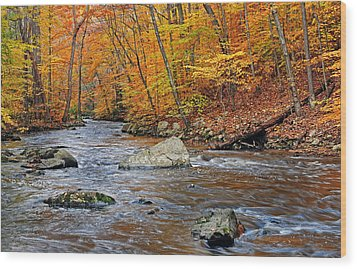 Autumn At The Black River Wood Print