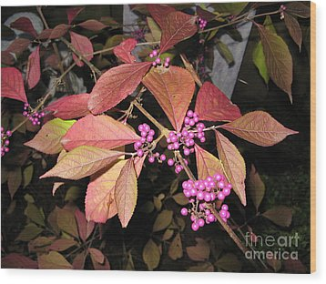 Autumn Beauty Berry Wood Print by Marlene Rose Besso