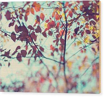 Autumn Beauty Wood Print by Kim Fearheiley