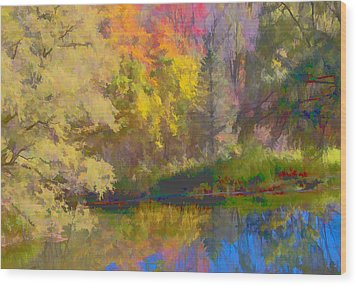 Autumn Beside The Pond Wood Print by Don Schwartz