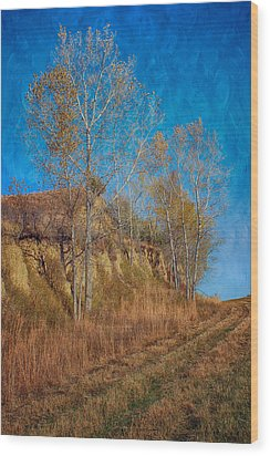 Autumn Bluff Painted Wood Print