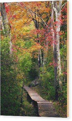 Autumn Boardwalk Wood Print by Bill Wakeley