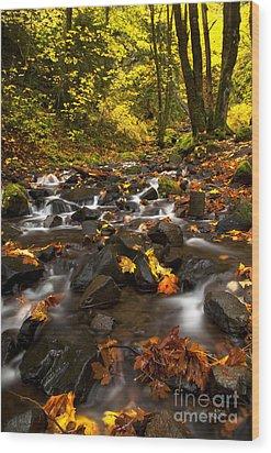 Autumn Breeze Wood Print by Mike  Dawson