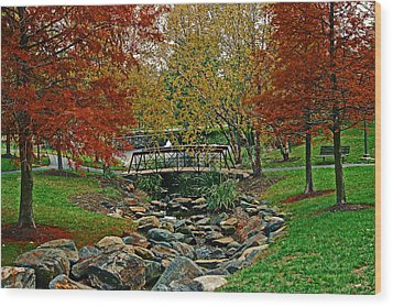Wood Print featuring the photograph Autumn Bridge by Andy Lawless