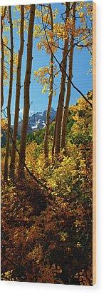 Autumn Brilliance 2 Wood Print