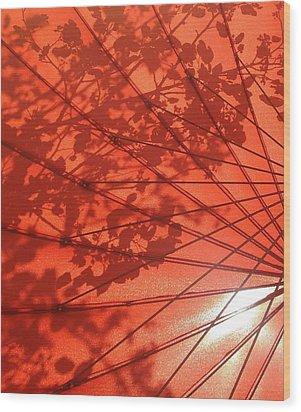 Autumn Butterfly Wood Print by Brenda Pressnall