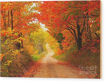 Autumn Cameo 2 Wood Print by Terri Gostola
