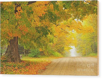 Autumn Cascade Wood Print by Terri Gostola