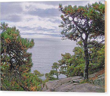 Wood Print featuring the photograph Autumn Coast by Gene Cyr