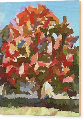 Autumn Color Riot Abstract Wood Print