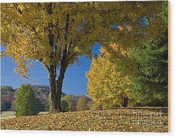 Autumn Colors Wood Print by Brian Jannsen