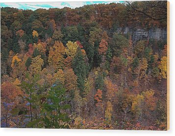 Wood Print featuring the photograph Autumn Colors In Taughannock State Park Ithaca New York by Paul Ge