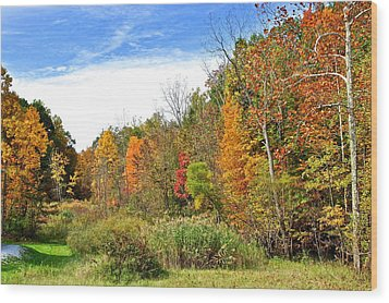 Autumn Colors Wood Print by Frozen in Time Fine Art Photography