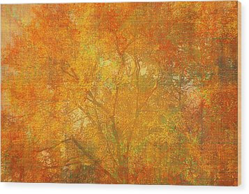 Autumn Colors Wood Print by Suzanne Powers