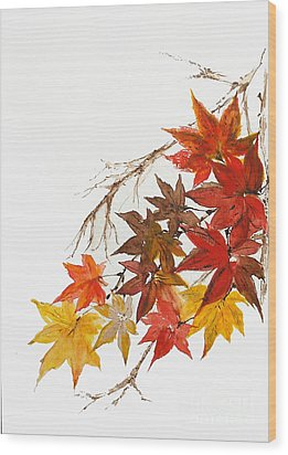 Autumn Colour Wood Print by Sibby S
