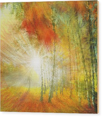 Autumn Colours Wood Print by Igor Zenin