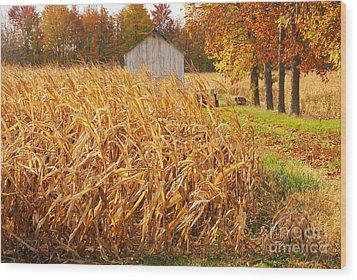 Autumn Corn Wood Print by Mary Carol Story