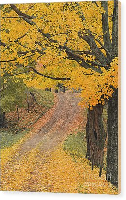 Autumn Country Road Wood Print by Alan L Graham