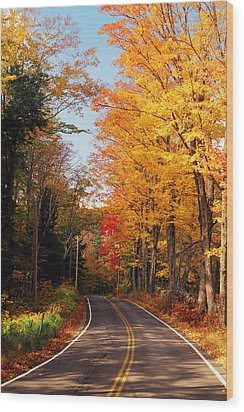 Autumn Country Road Wood Print by Joann Vitali