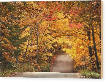 Autumn Country Road Wood Print
