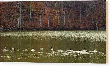 Autumn Cove Wood Print by Karen Wiles