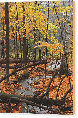 Wood Print featuring the photograph Autumn Creek In The Rain by Rodney Lee Williams