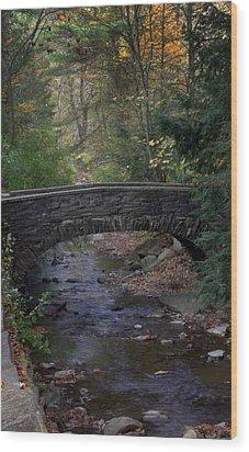 Autumn Creek Wood Print by J Allen
