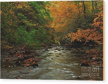 Autumn Creek Wood Print by Melissa Petrey