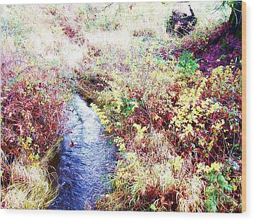 Wood Print featuring the photograph Autumn Creek by Vanessa Palomino