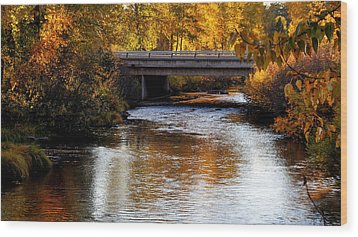 Wood Print featuring the photograph Autumn Crossing by Jan Davies