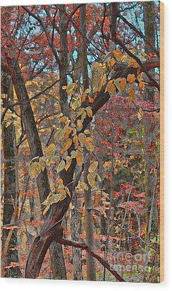 Autumn Day Wood Print by Jeff Breiman