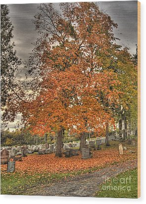 Wood Print featuring the photograph Autumn Delight by Jim Lepard