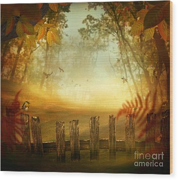 Autumn Design - Forest With Wood Fence Wood Print by Mythja  Photography