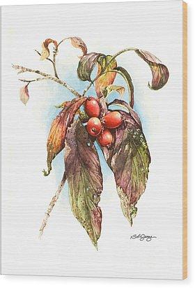 Autumn Dogwood Wood Print by Bob  George