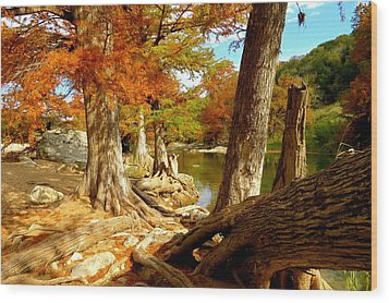 Wood Print featuring the photograph Autumn Dreams by David  Norman